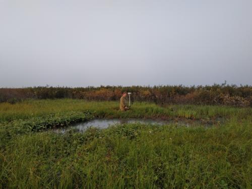 Комплекс проектно-изыскательских работ по нефтегазовым объектам.  На Гыданском полуострове